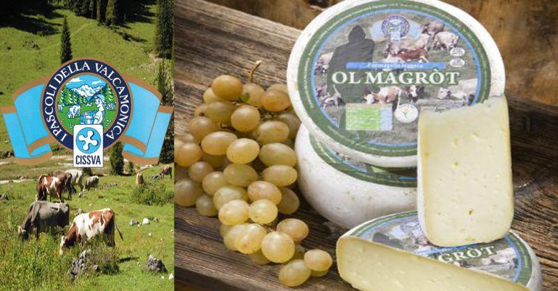 offerta  formaggella magra OL MAGROT - occasione produzione formaggio magro tipici italiani