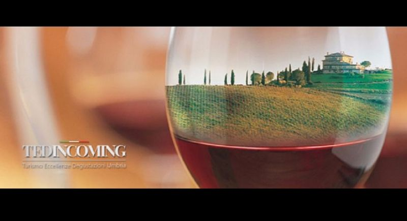 Offer of organized vacations in Umbria - Opportunity Promotion of cellars visit in Umbria