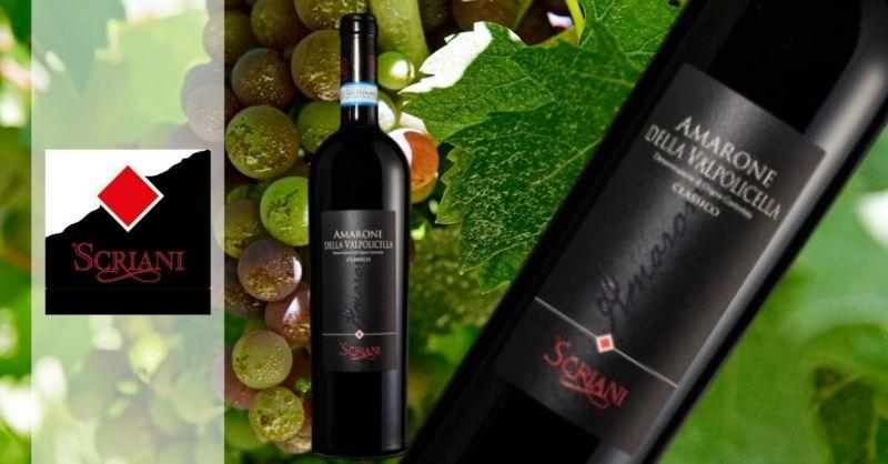 Azienda Agricola SCRIANI - Offerta miglior vino amarone della Valpolicella DOCG Classico 2009