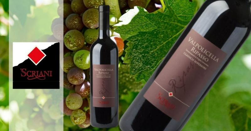 Azienda Agricola SCRIANI - Trova migliore promozione Ripasso Valpolicella Classico Superiore DOC