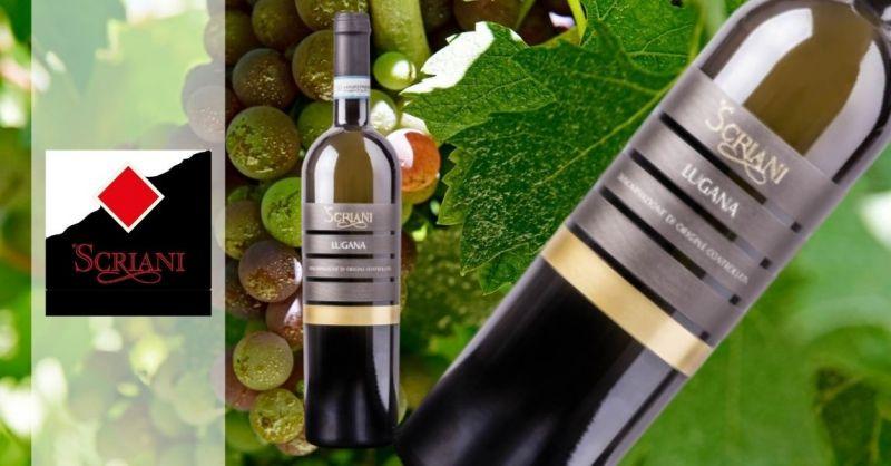 Azienda Agricola SCRIANI - Offerta vendita online vino bianco Lugana DOC 2018 uve Trebbiano