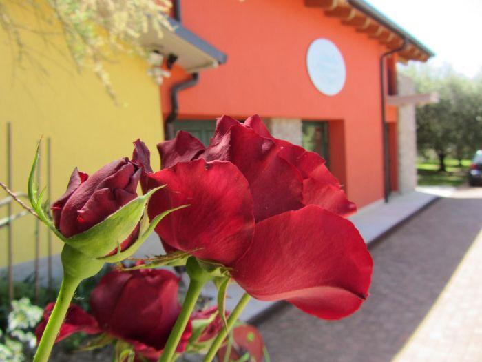BRUNO Cavaion Veronese foto 2