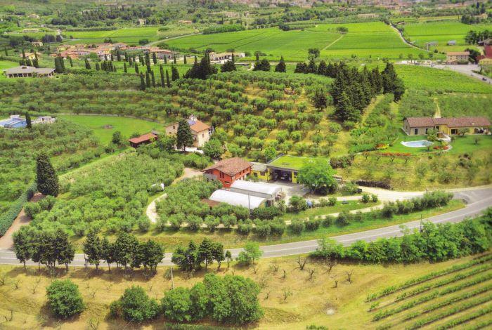 BRUNO Cavaion Veronese foto 7