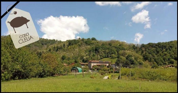 FERRUCCIO Sotto il Monte Giovanni XXIII foto 7